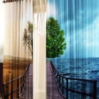 Фотошторы с печатью 3d Мост дерево