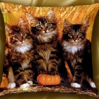 Декоративная подушка Котята